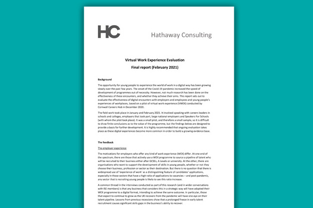 Final Report: Virtual Work Experience Evaluation