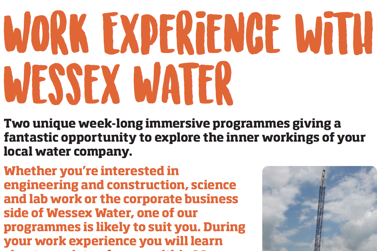 Work experience flyer example