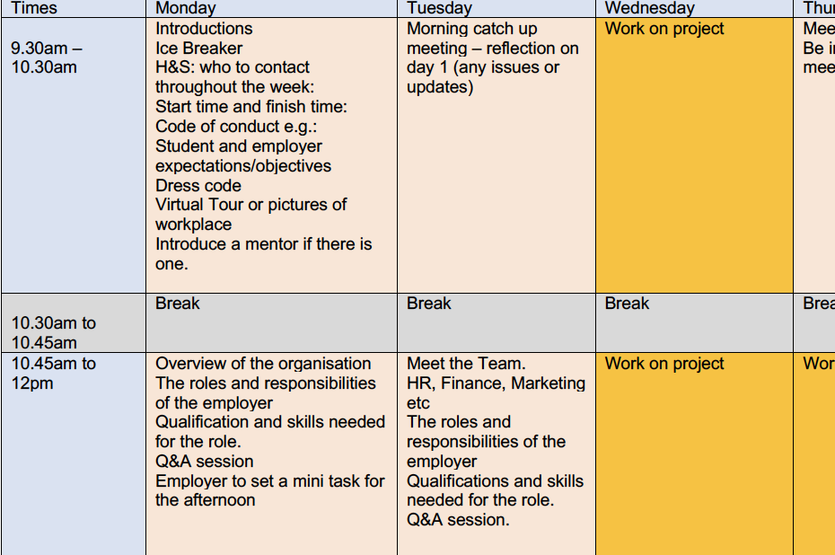 An Example of a Virtual Work Experience Timetable