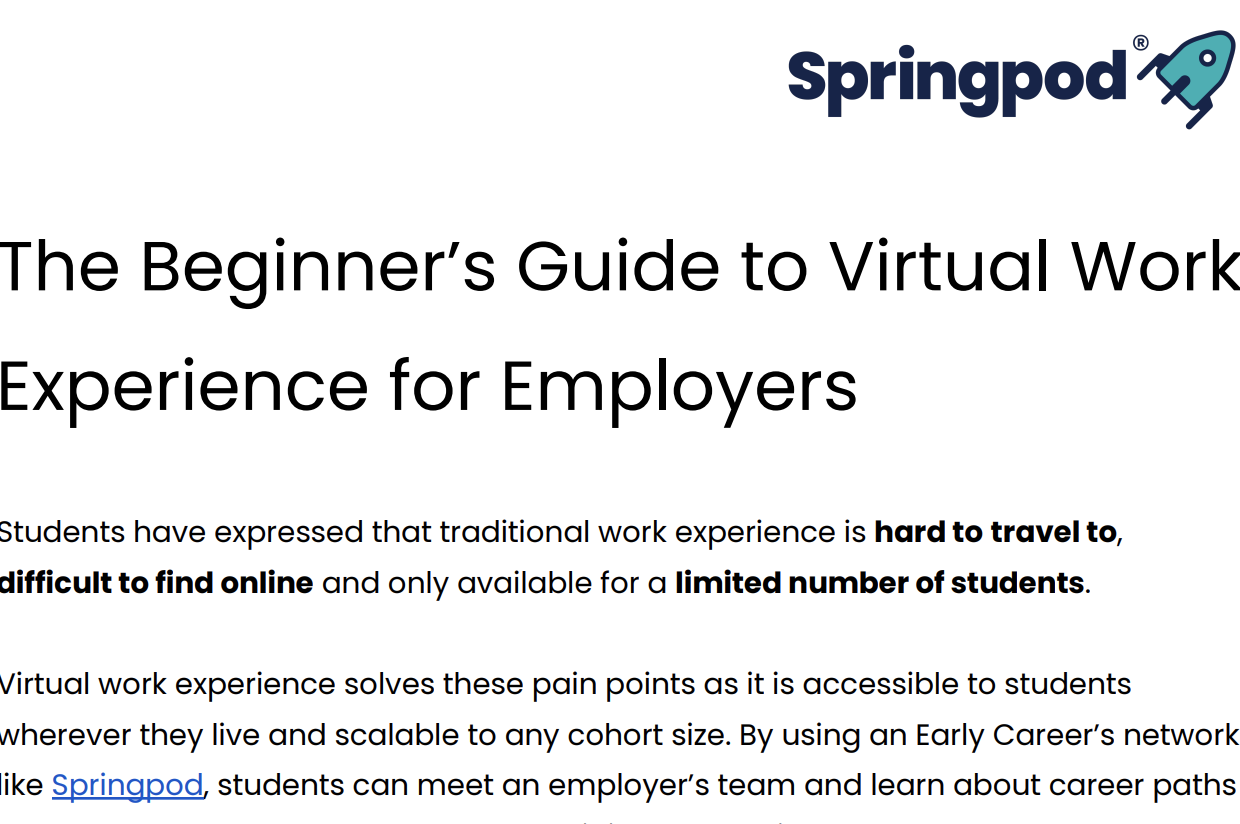 The Beginner's Guide to Virtual Work Experience for Employers