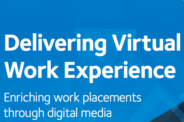 Delivering Virtual Work Experience