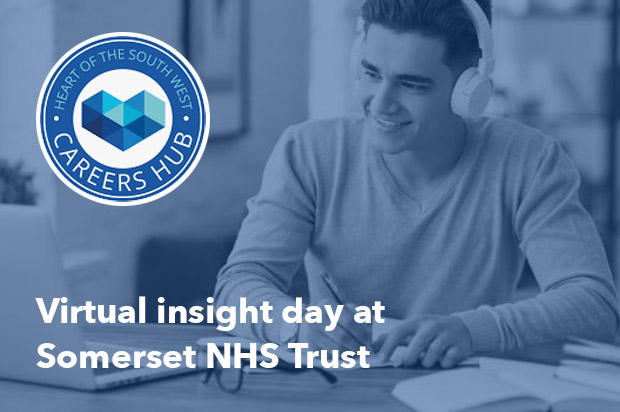 A Virtual Insight Day at the Somerset NHS Trust